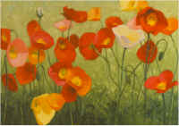 a flock of poppies.jpg (109074 bytes)